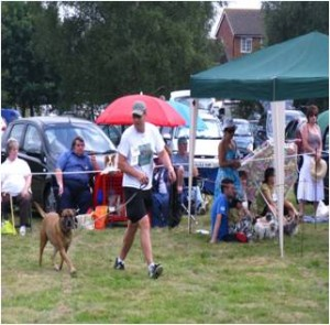 Burgh Heath Dog Show1