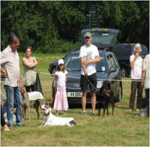 Burgh Heath Dog Show2