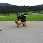 Dog Training Switzrland