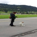 Dog Training Switzerland